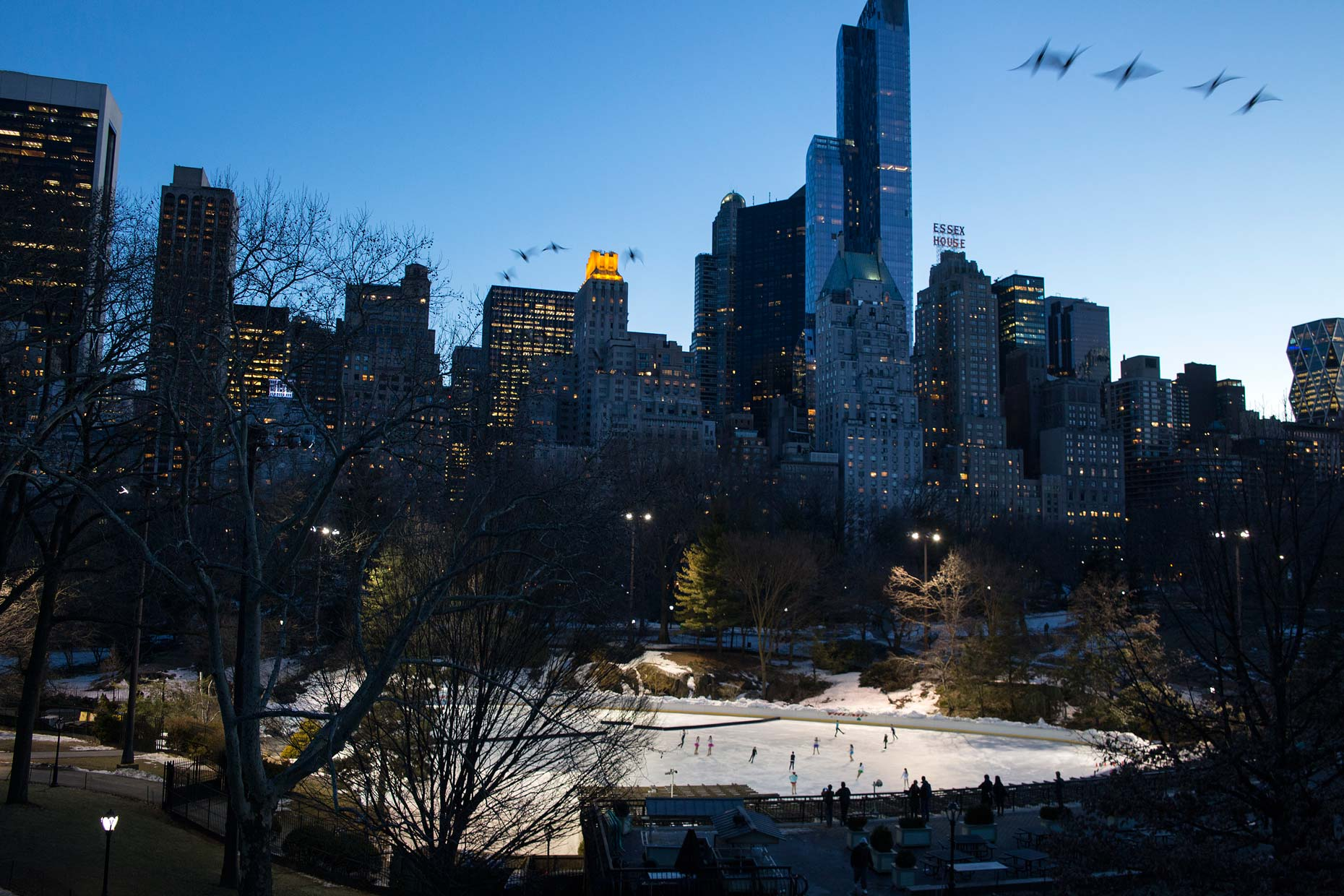 USA-NYC-Central-Park-winter