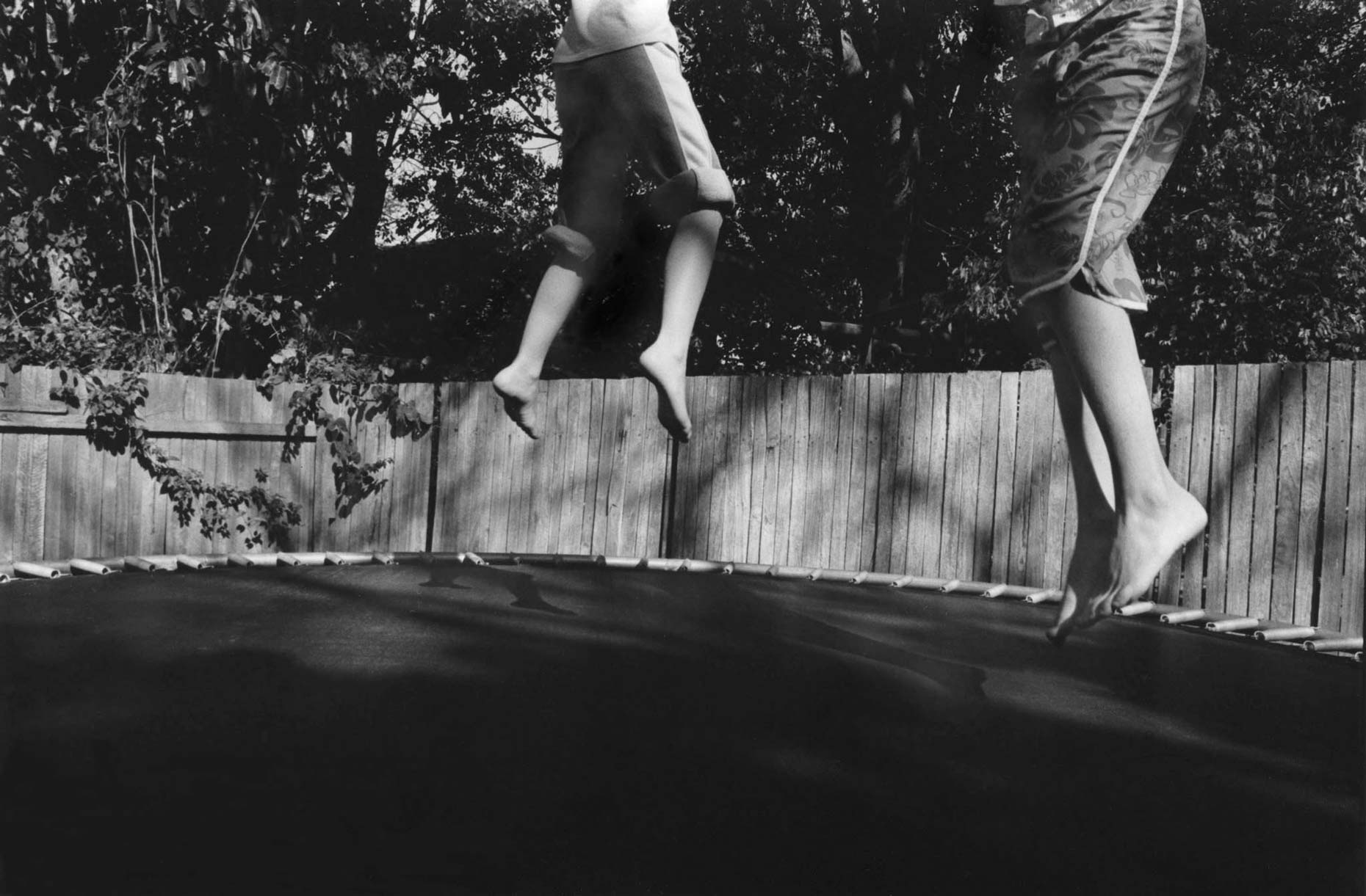 Visible,-Now-trampoline-59